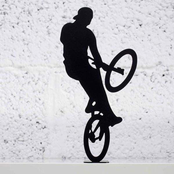 Extreme Bike Rider